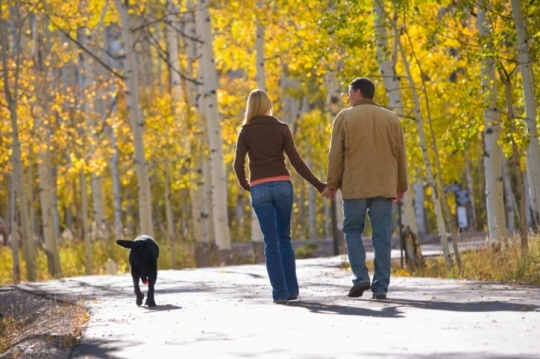 couple strolling in woods with dog